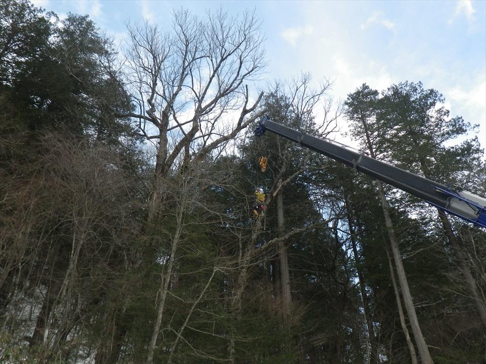 林業作業9